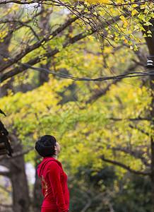 凝望着秋叶的红衣女子图片
