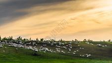 呼伦贝尔大草原落日风光图片