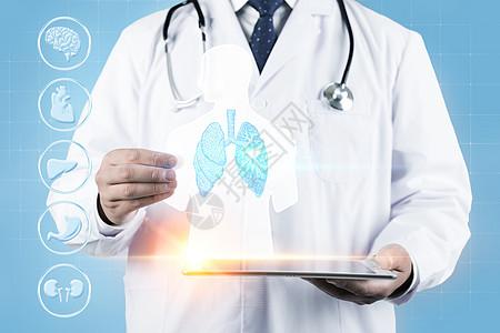 医学显示人类结构图片