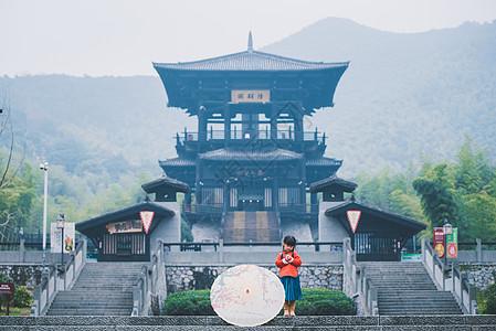 大唐贡茶院图片