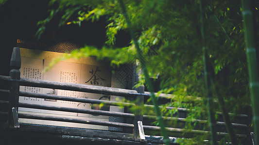 大唐贡茶院竹林美景图片