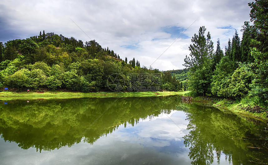 湖景森林湿地公园图片