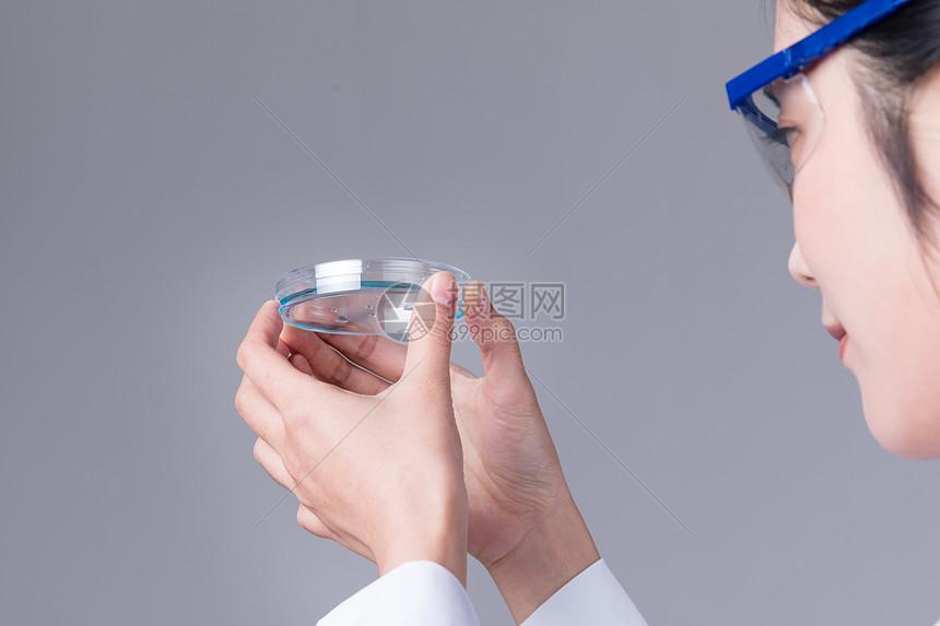 科学家手拿器皿做研究图片