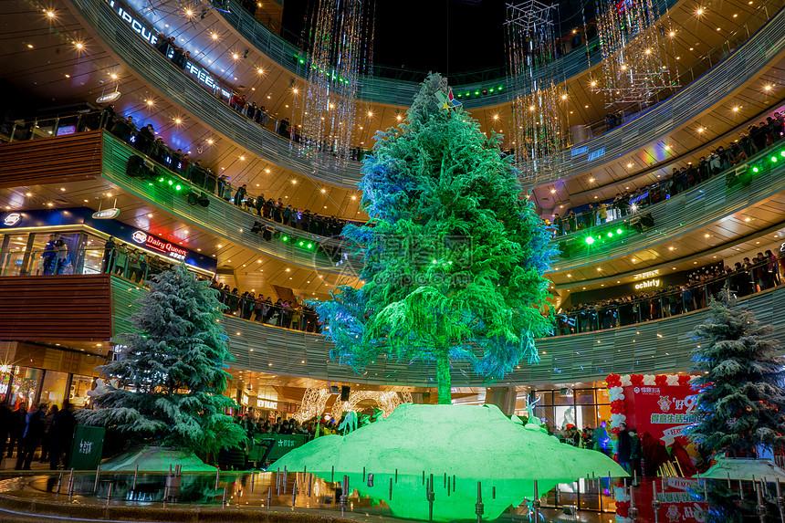 圣诞节节日气氛圣诞树图片