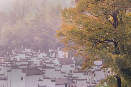 婺源石城秋色风景图片