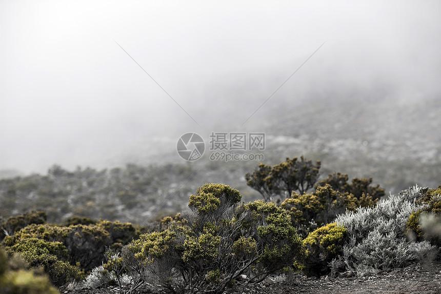 火山灰地带风景图片