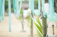 婚礼布置婚礼现场 500736064图片