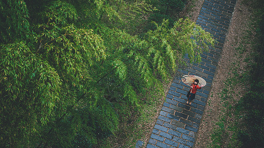 竹林中国风小女孩图片