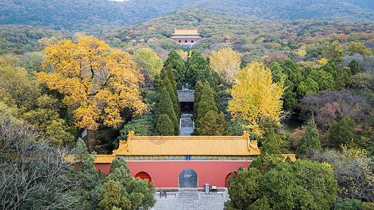 南京明孝陵秋景图片