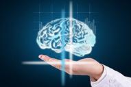 人工智能大脑图片