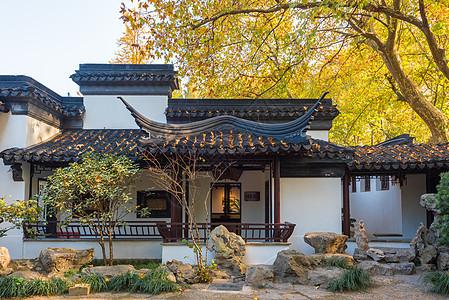 江苏南京园林秋色图片