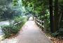 大领山森林公园街道图片