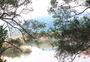 大领山森林公园图片