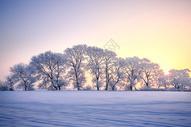 冬天雾凇岛风光图片