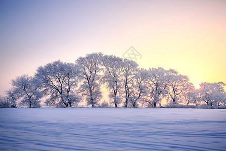 雾凇岛风光图片