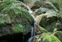 山间小溪图片