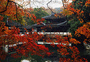 西湖红叶图片