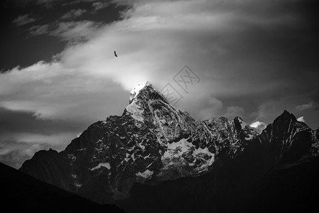 寂寥冬季雪山上飞翔的老鹰图片