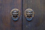 中国元素的门500751133图片