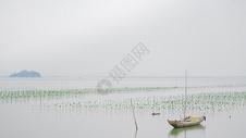 广东盐洲风光图片