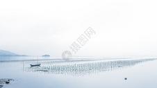 广东盐洲景色图片