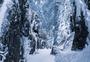 冬天的峨眉山图片