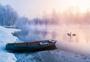 大雪雾凇下的小船天鹅图片
