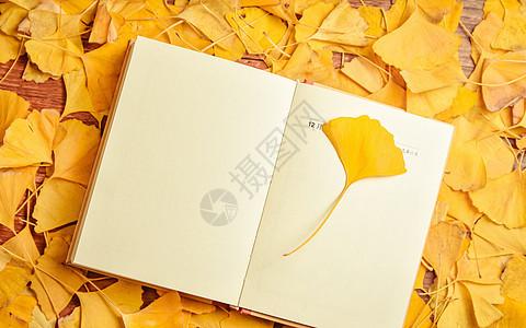 银杏叶与日记本图片