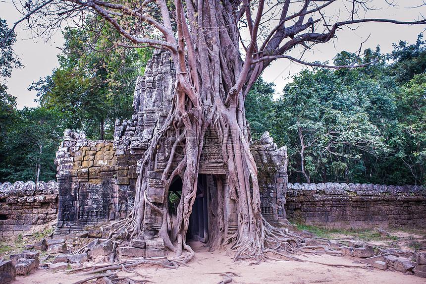 柬埔寨塔逊寺图片