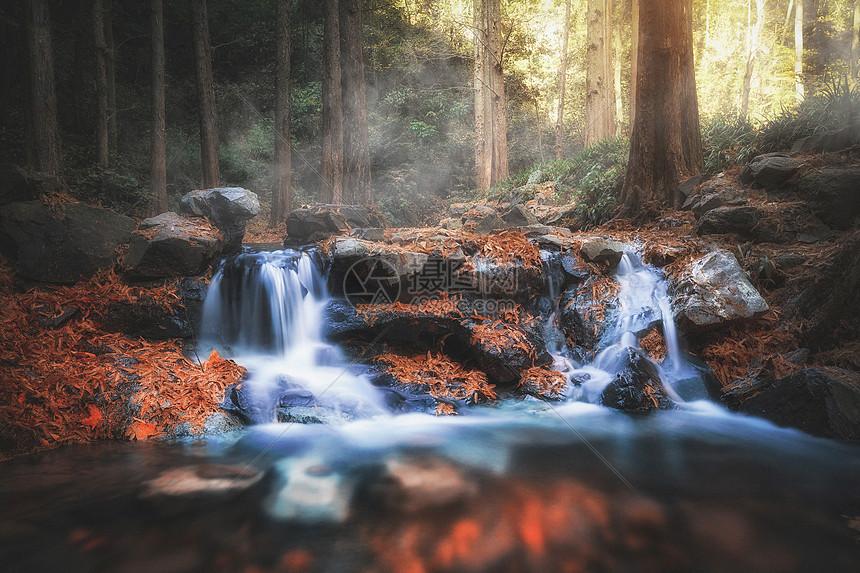 九溪瀑布与枫叶图片