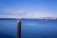 美国加州拉古纳海港图片