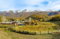 新疆白哈巴秋色图片