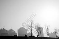 上海城市发展500755072图片