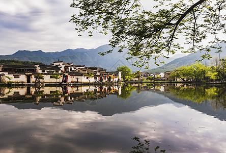 春晓宏村图片