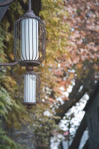 中国风的灯笼装饰图片