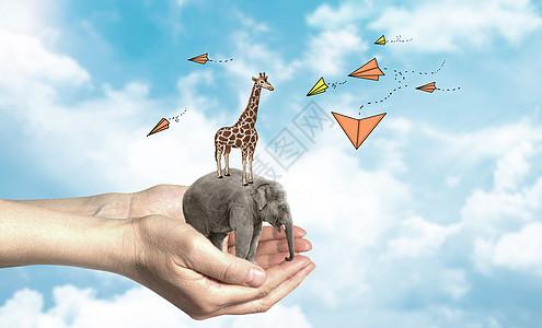 创意环保保护动物图片