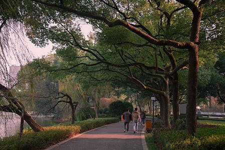 公园一景图片