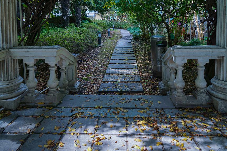 深秋落叶的小道图片
