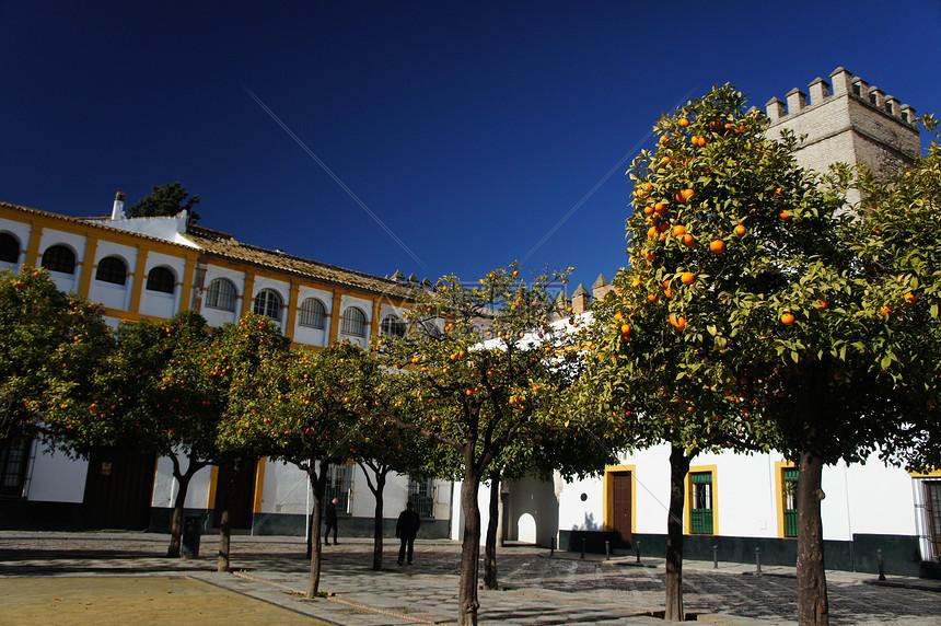 西班牙塞维利亚的冬天图片