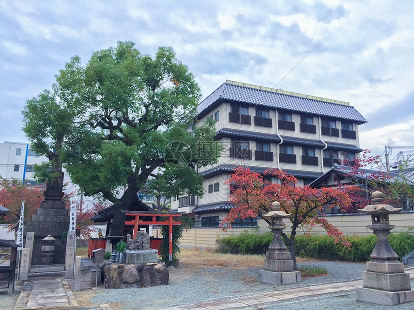 日本秋天一瞥图片