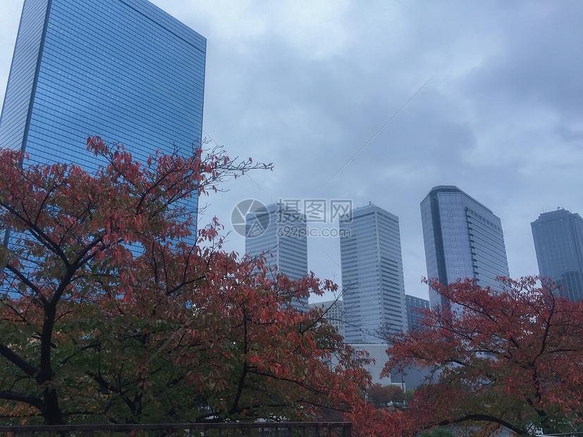 秋天大阪的街景图片