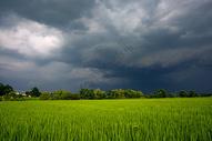 风起云涌图片