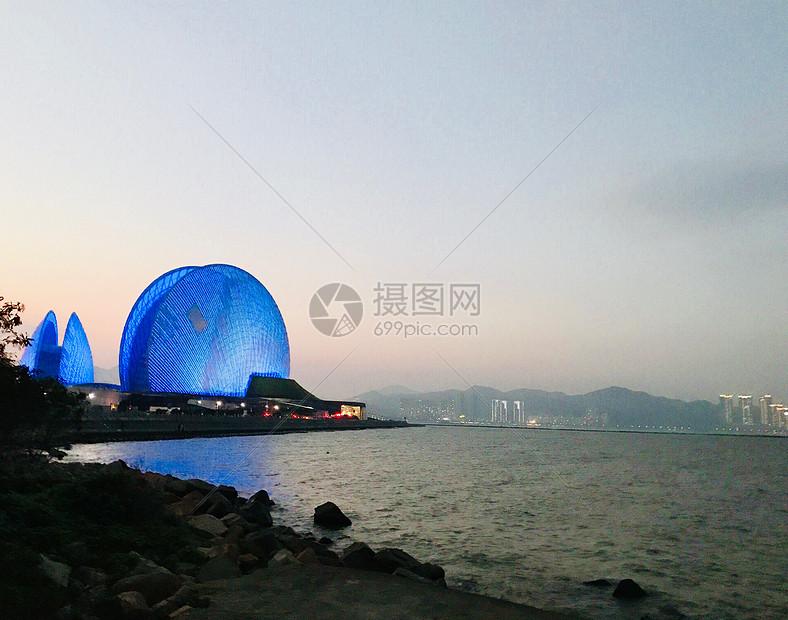 海边的大贝壳图片