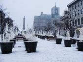 国外雪后装饰图片