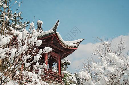 江南雪景图片