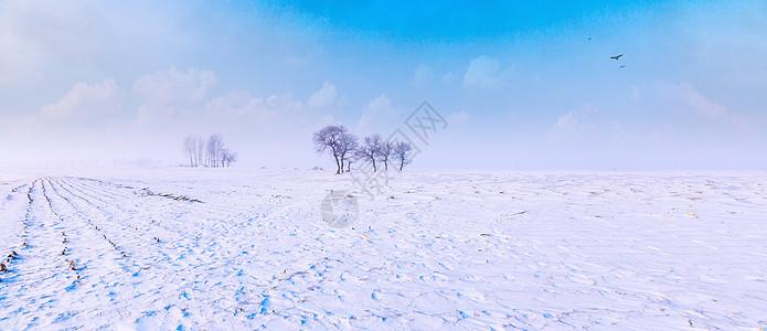 雪地风光图片