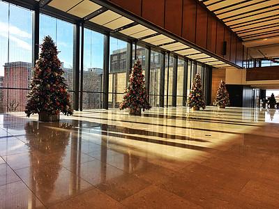 商场大厅里的圣诞树图片