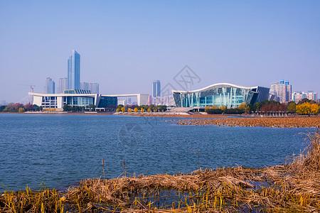 武汉月湖景色图片