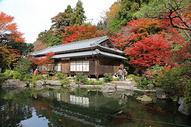 日本园林景观500764573图片