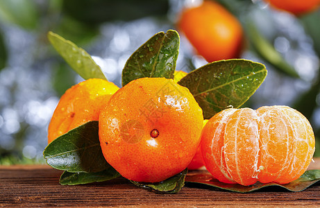 砂糖橘图片